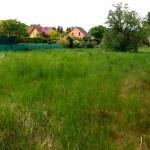 Die Suche nach dem Grundstück – Anforderungen und Lage