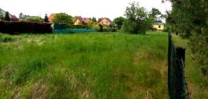 Grundstück_Haus
