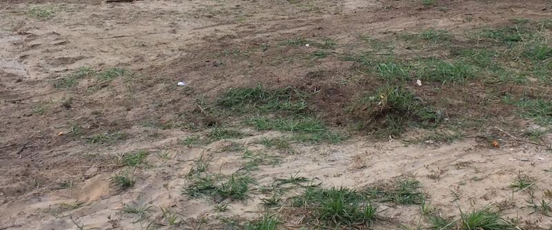 Bodengutachten erstellen